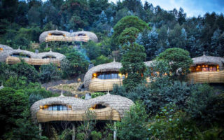 3 Days Super Luxury Gorilla Safari