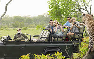 Group Safaris